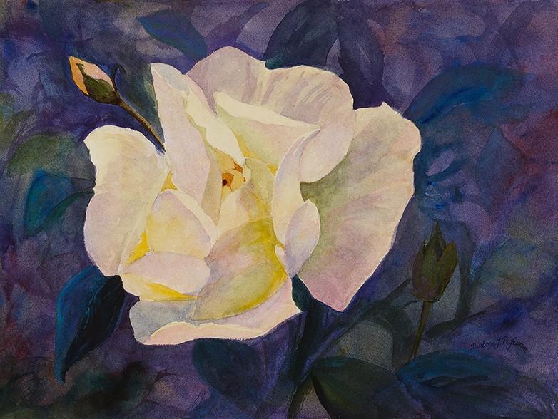 Pafume-Texas-Rose